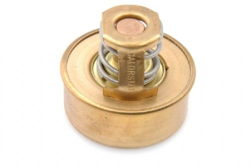 Thermostat for in top hose